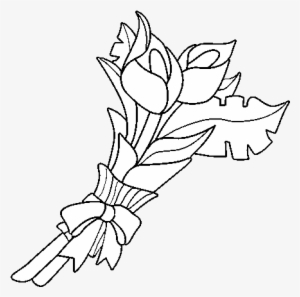 White Lily Png Free Hd White Lily Transparent Image Pngkit