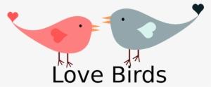 Love Birds PNG, Free HD Love Birds Transparent Image - PNGkit