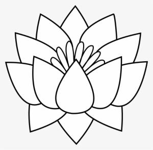 Lotus Flower Png Free Hd Lotus Flower Transparent Image Pngkit