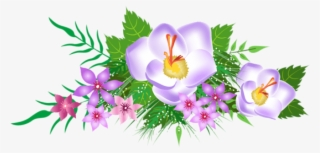 Spring Flowers Png Free Hd Spring Flowers Transparent Image Pngkit