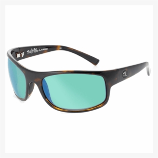 0c4fae37d8 Salt Life Largo Men s Sunglasses - Sunglasses
