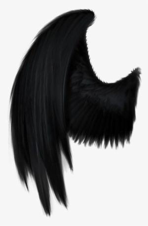 Black Wings Png Free Hd Black Wings Transparent Image Pngkit