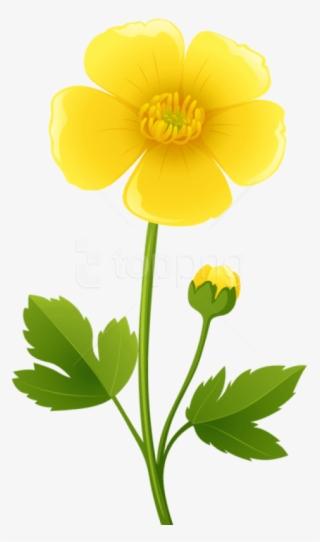 flower background png free hd flower background transparent image page 7 pngkit pngkit
